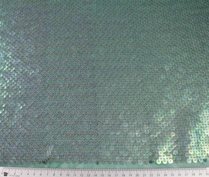 Transparente Paillette auf Stoff gestickt - dunkelgrün - 76-019-011